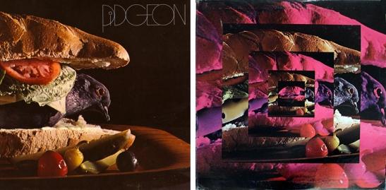 pidgeon-collage